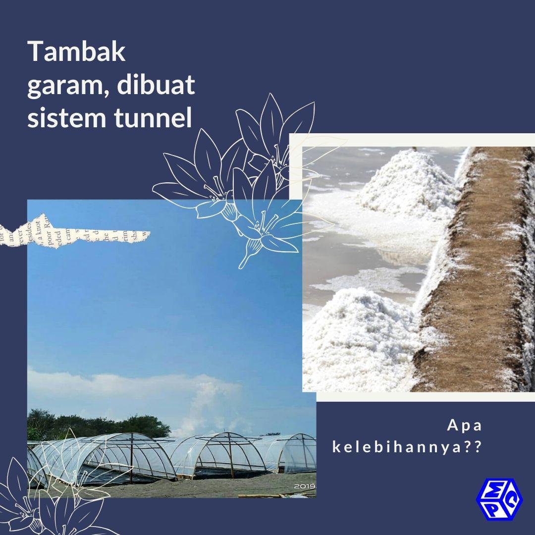 sistem budidaya garam dengan model tunnel, apa keunggulannya?